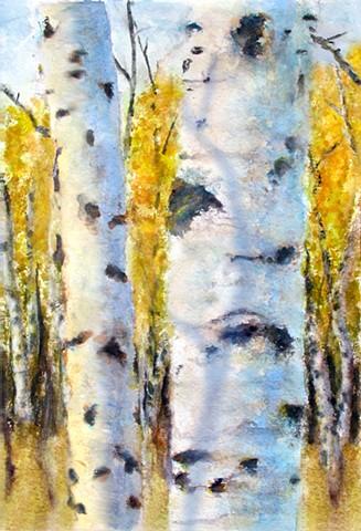 Fall Birch 2