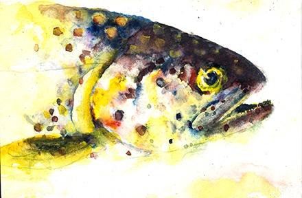 Fish Series #1