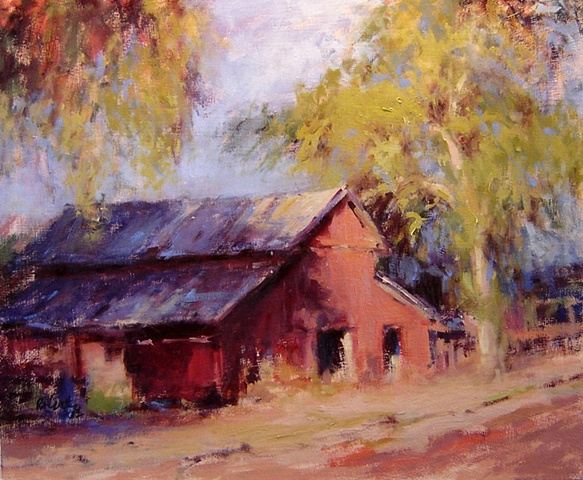 Old barn hidin in the shadow of a eucalyptus tree