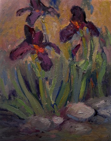 Iris, paintings of Iris, purple iris,