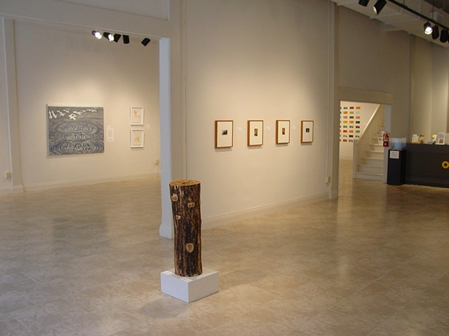 Art and Place 2: Material at Hand, Space 301 off-centre, featuring works from Buzz Spector, Francis Alys, William  Christenberry, Lance Winn, Christopher McNulty, Greg Hopkins, Buffy  Rinehart, Jon Coffelt, and Orion Wertz