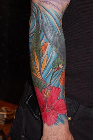 hummingb#1