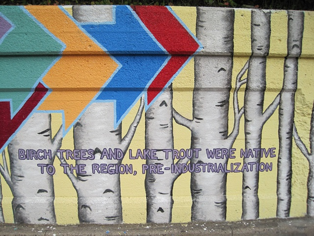 birch trees and arrows-shot 4