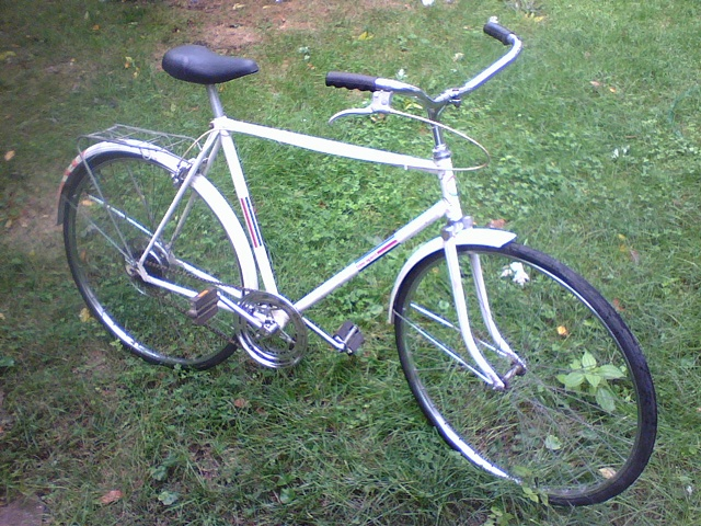 Sears-Free Spirit-5-speed
