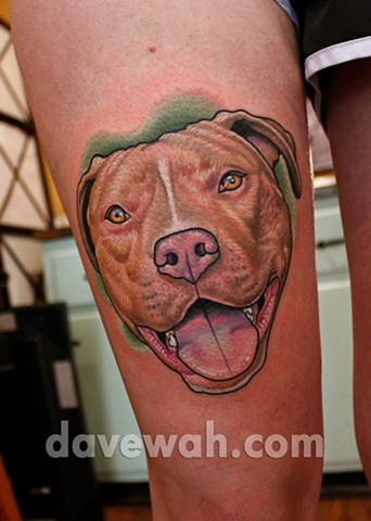 Dog portrait tattoo by dave wah at stay humble tattoo company in baltimore maryland the best tattoo shop in baltimore maryland