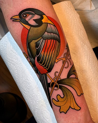 silver eared mesia tattoo by dave wah at stay humble tattoo company in baltimore maryland the best tattoo shop and artist in baltimore maryland