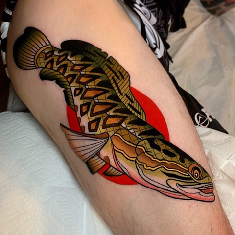 Stewart's northern snake head tattoo