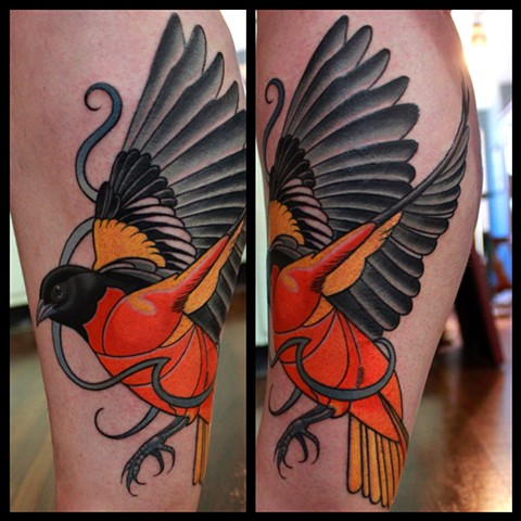 oriole tattoo by dave wah at stay humble tattoo company in baltimore maryland