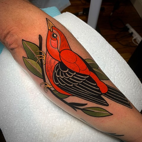 scarlet tanager bird tattoo by tattoo artist dave wah at stay humble tattoo company in baltimore maryland the best tattoo shop in baltimore maryland
