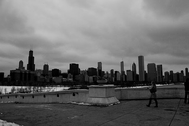 Chicago Skyline 4 of 8