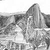Machu Picchu Quick Sketch
