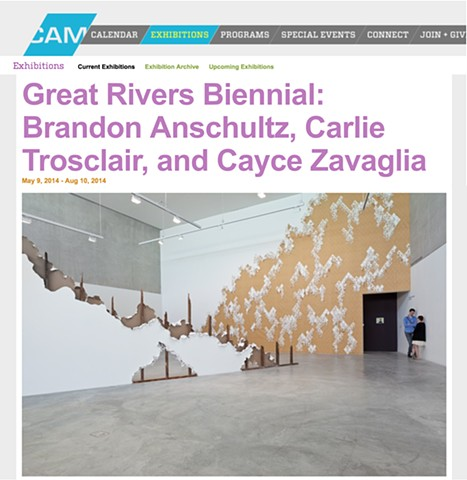 Contemporary Art Museum St. Louis May 2014