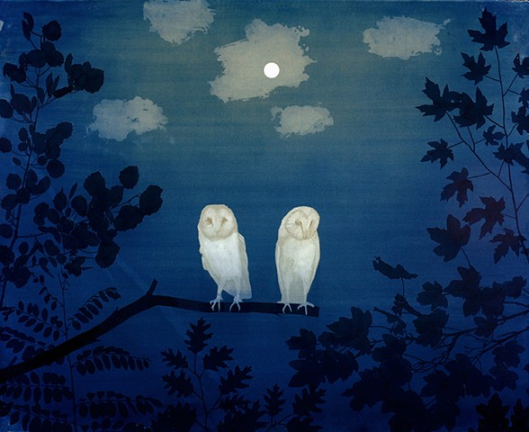 two owls (caught in the glow)