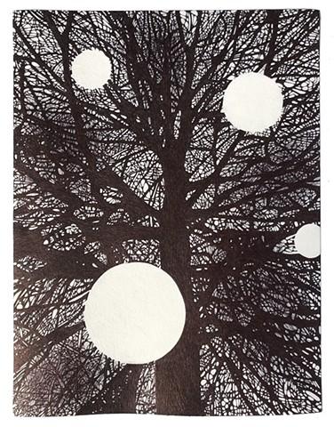 Tree, with Escapes (Portal No. 35)
