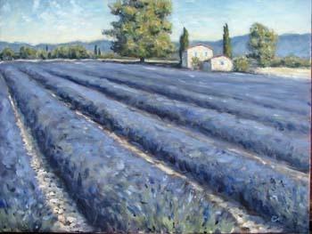 """Lavender Farm"""