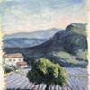 """""""Lone Tree in a Lavender Field"""""""