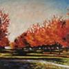 """""""Fall Trees at Franciscan University"""""""