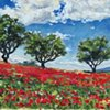 """""""Poppies in Provence"""""""