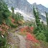 Trail/Washington State
