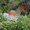 Steel banty rooster