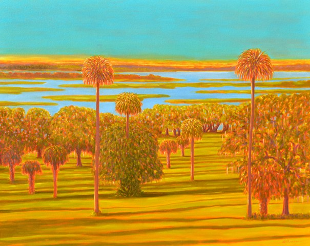 Orange lake Overture by Florida Artist Gary Borse Orange Lake Overlook McIntosh FL is available at Plum Contemporary Art Gallery St Augustine FL
