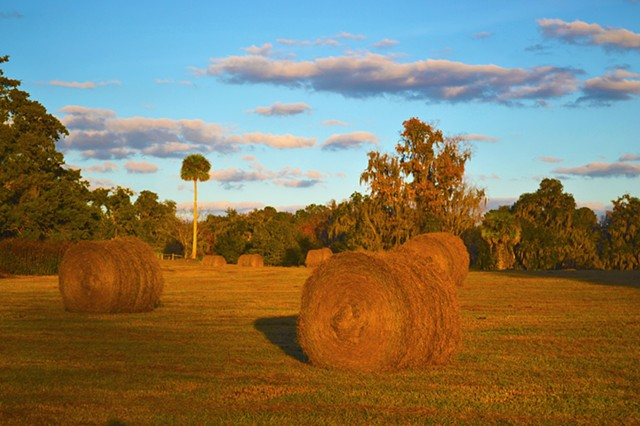 Hayrolls at Sunset