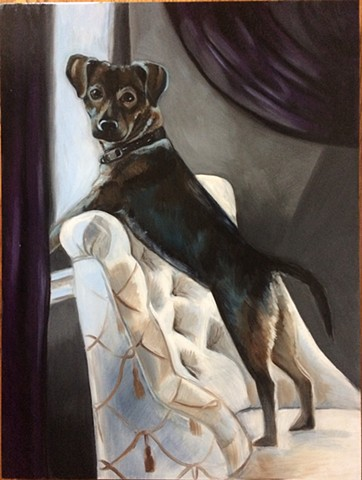 oil portrait of dog, painting of dog, artist commissioned dog portrait