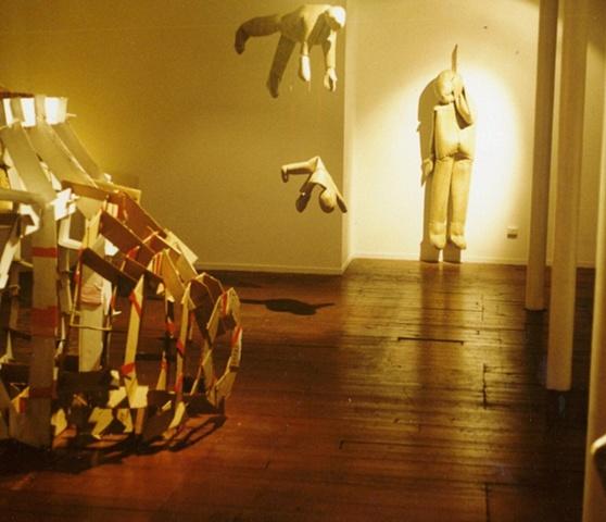 'xy skin' Blue Oyster Gallery Dunedin  NZ