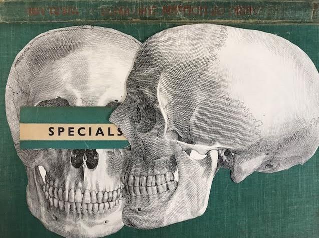skull x 2