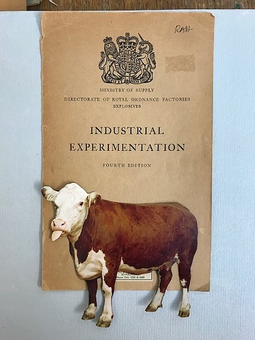 industrial cow blue