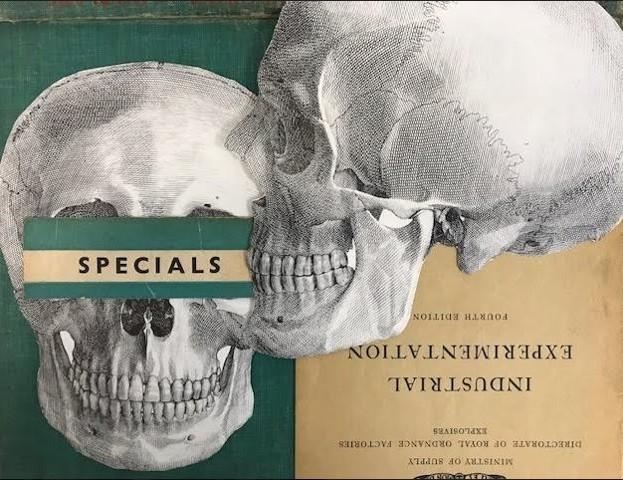 skull experimentation