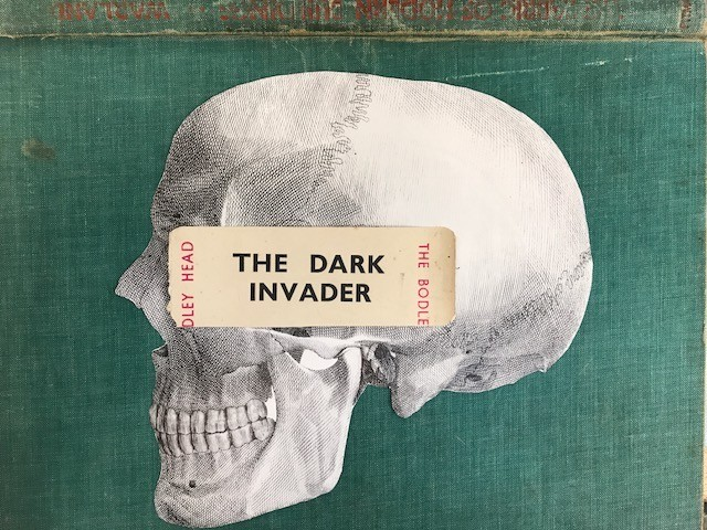 the dark invader skull