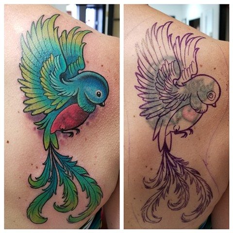 birdie cover up