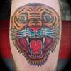 Trad Tiger Head