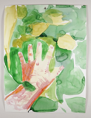 hand in the catalpa