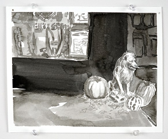 Lion and pumpkins
