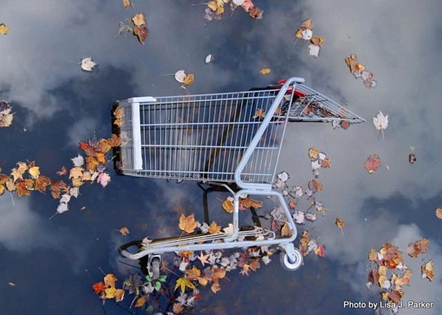 Urban Beautiful: Shopping Cart in Creek, Centreville, VA