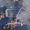 Urban Beautiful: Shopping Cart in Creek, Centreville, VA