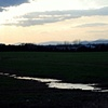 Field After Storm - Culpeper, VA