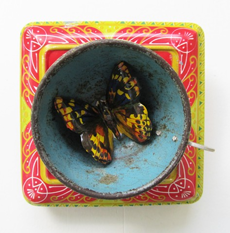Butterfly in my teacup