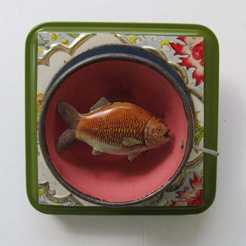 Fish in my teacup