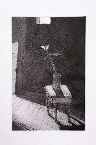 Untitled (with poinsettias)