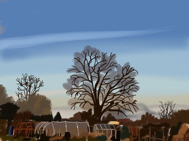 #066 Allotment Sky