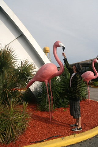 Smoking Flamingo