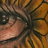 Daisy Eye