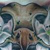 Owl skull chest piece