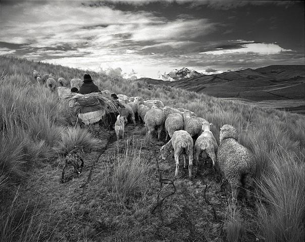 Shepherds Family, Tigua. Ecuador