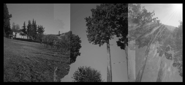 landscapes, holga camera, sureal imagery