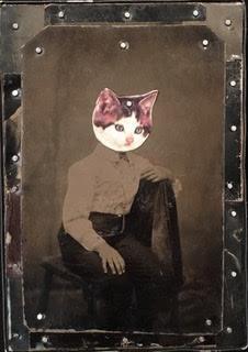 'Kitten'