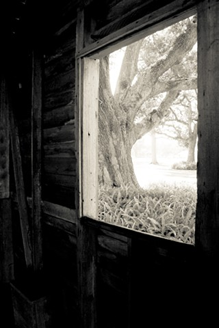 View from Slave Quarters